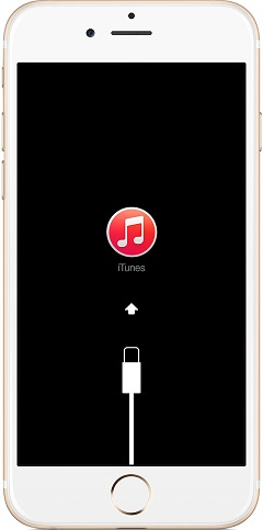 Connect iPhone 6 with iTunes